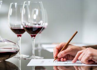 cours dégustation vins